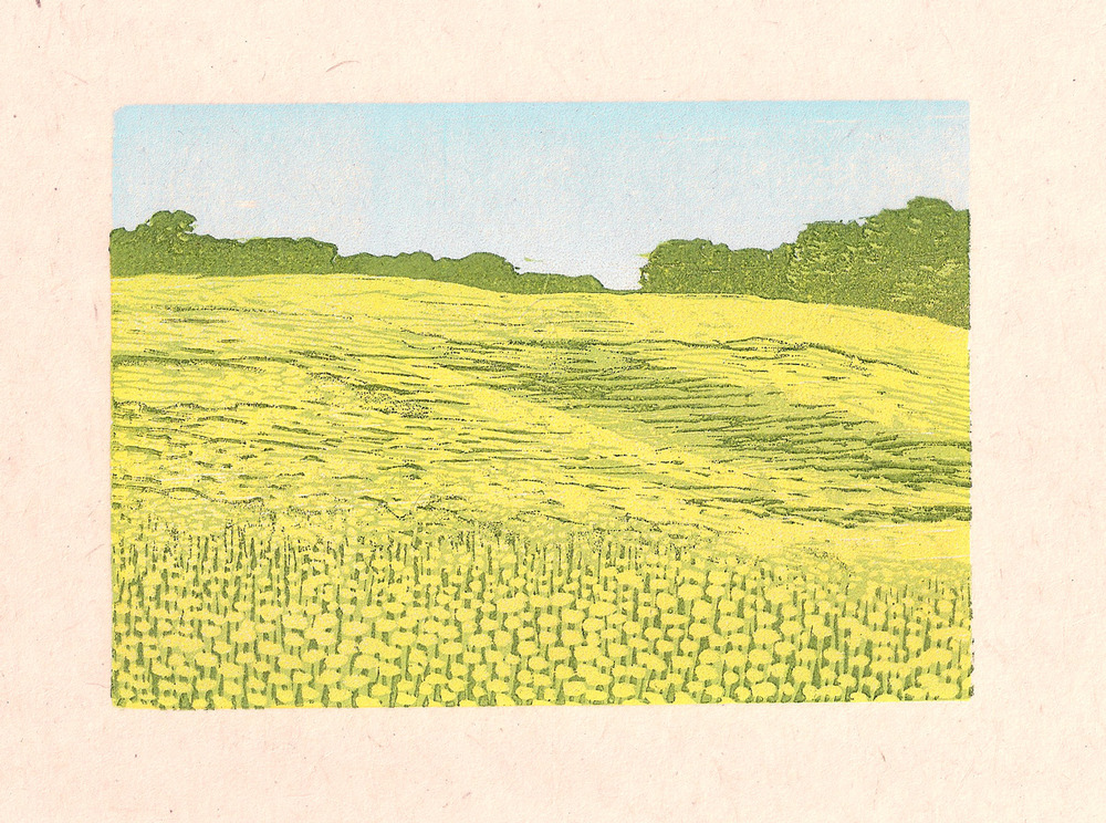 field of sunflowers, woodcut print